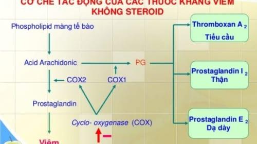Video Dược lý về Thuốc chống viêm không steroid - NSAIDs