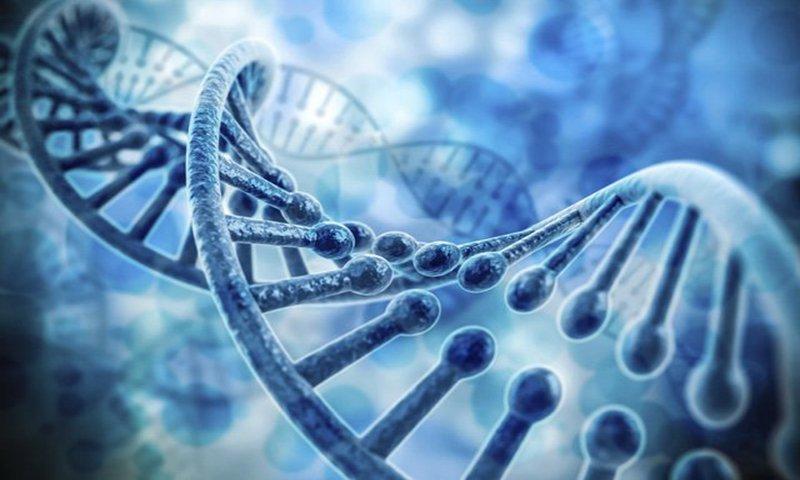 sàng lọc di truyền