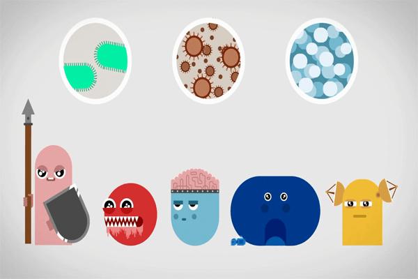Vai trò của hệ miễn dịch trong cơ thể