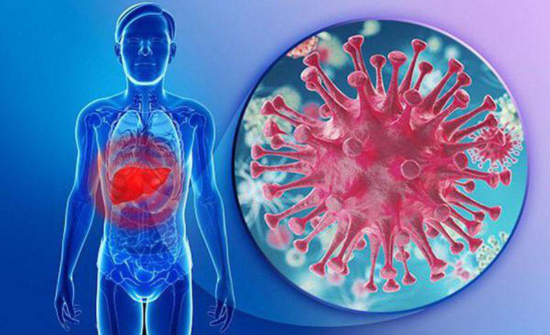 Viêm gan B mãn tính và cấp tính thường gây nên những triệu chứng như mệt mỏi đau bụng và buồn nôn